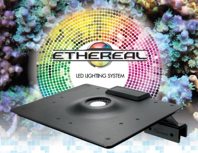 MAXSPECT LED ETHEREAL